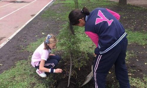 como-cuidamos-medio-ambiente-yaocalli-1
