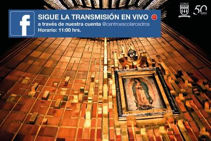 peregrinacion basilica_en_vivo_facebook-01.jpg